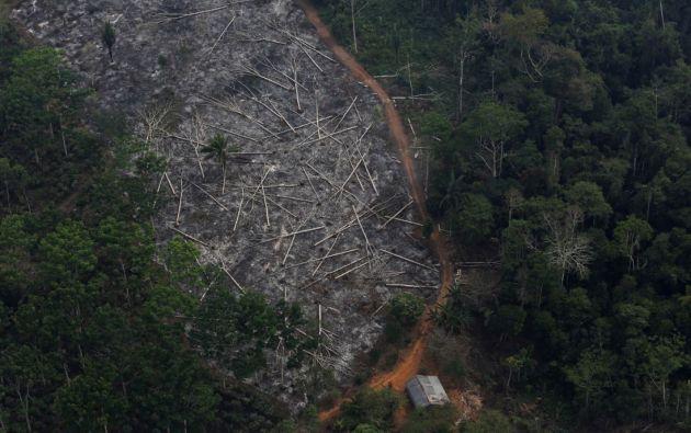 La región amazónica brasileña sufre los peores incendios forestales de los últimos años, achacados en gran parte a la deforestación. Foto: Reuters.