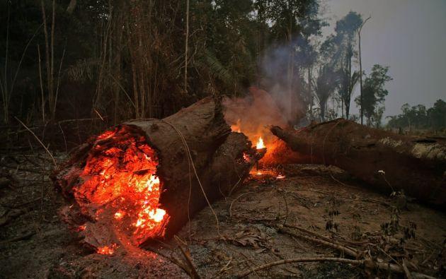 El Amazonas ayuda a regular el ambiente, el clima, la humedad y los vientos en el planeta. Foto: AFP