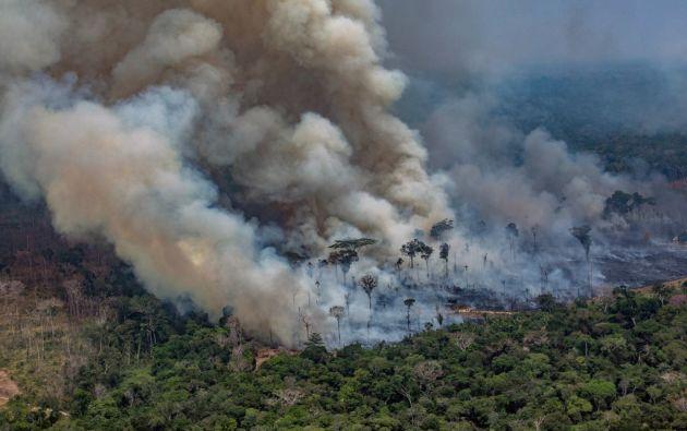 Los investigadores sospechan que el trío habría pagado a unos cincuenta hombres para derribar 20.000 hectáreas. Foto: AFP