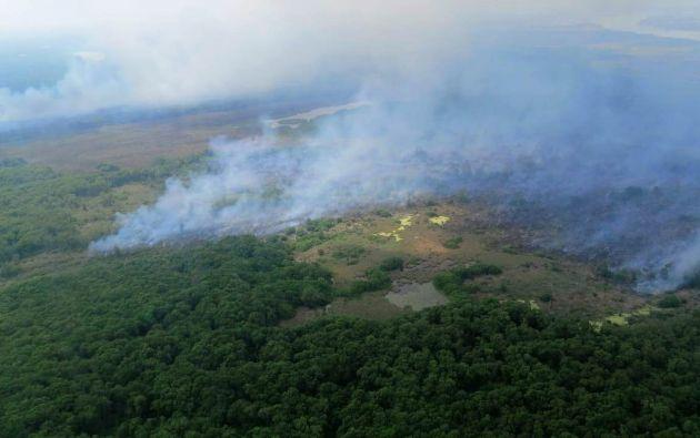 Al menos 105.000 hectáreas de bosques, pastos y manglares colombianos han sido consumidas por incendios forestales este año.