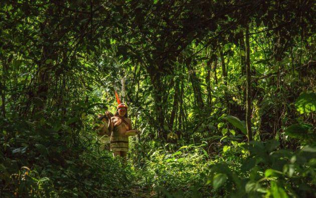 Al daño ecológico se suma el impacto al bienestar de las comunidades indígenas que residen en la Amazonía ecuatoriana. Foto: AFP.