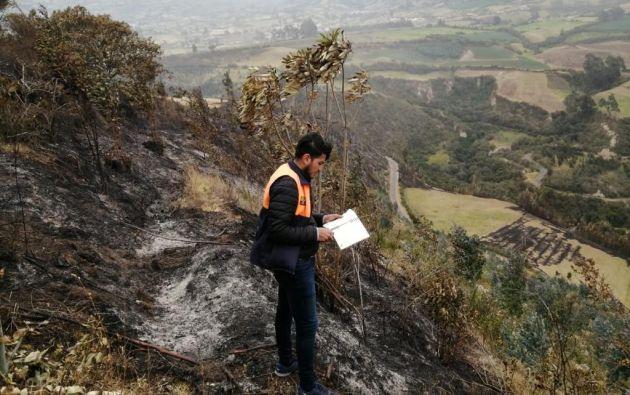 Afectación por incendio forestal registrado en sector el Puente Ayora, El Ángel, cantón Espejo. Foto: Twitter @Riesgos_Ec