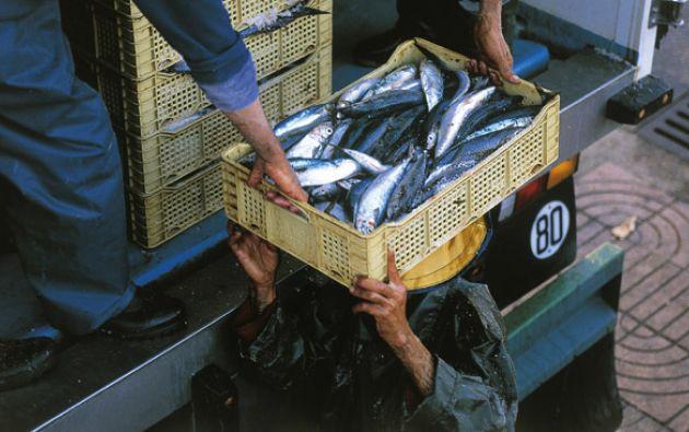 Uno de los prinicipales inconvenientes es que el público no compra el pescado que ahora tiene, pues quiere el que solía tener. Foto: AFP.