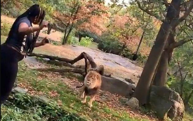 La mujer empezó a bailar y decirle 'Hola' al animal para llamar su atención. Foto: Captura.