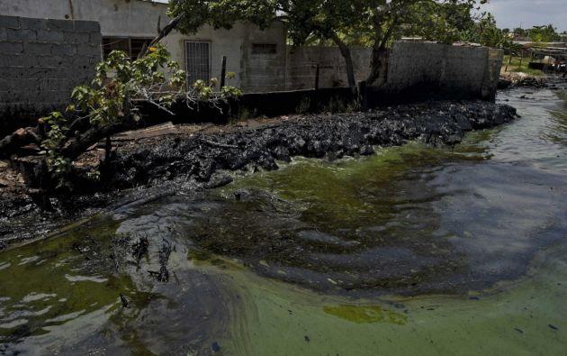 La contaminación es visible por todas partes. El agua de color verde neón muestra sus vetas de crudo. Foto: AFP