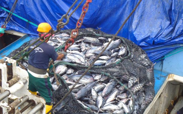 """La Comisón urge a Ecuador a crear un """"sistema de garantía de cumplimiento y sanción"""" para combatir las actividades de pesca ilegal."""