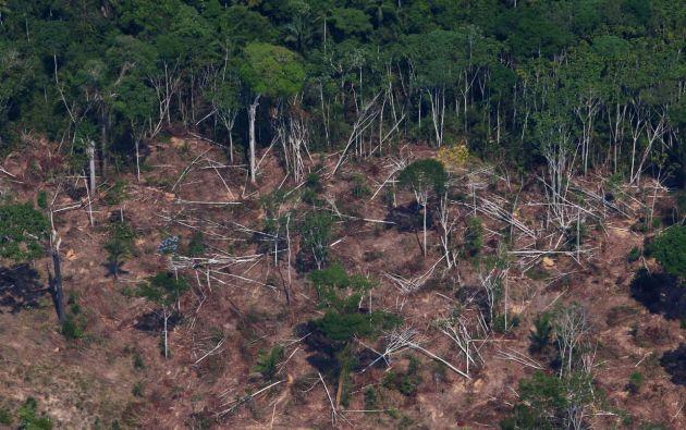 Una parcela deforestada y quemada en el Bosque Nacional Jamanxim en la amazonía brasileña. Foto: Reuters.