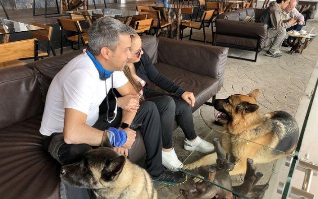 La tendencia pet friendly está ganando presencia en Quito. Foto cortesía