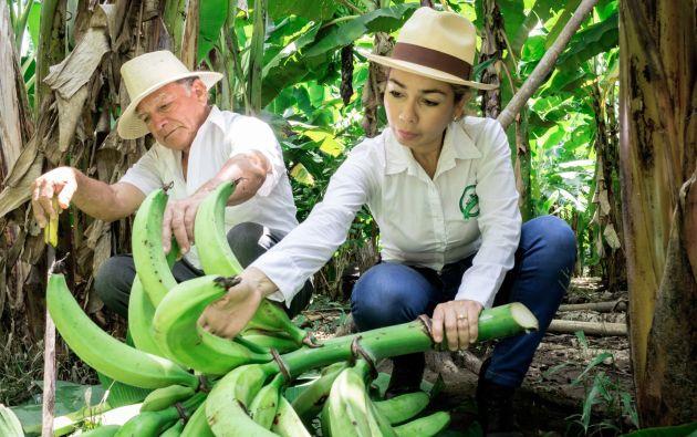 Luz Yadira Martillo es la fundadora del emprendimiento Chifles del Campo.