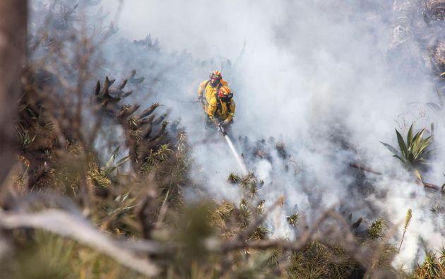 Continúan las operaciones de extinción en los focos activos del incendio forestal registrado en el cerro Casitagua.