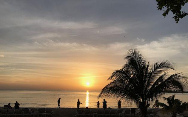 Airbnb y Bahama National Trust buscan cinco voluntarios para pasar 2 meses en las Bahamas. Foto: AFP.