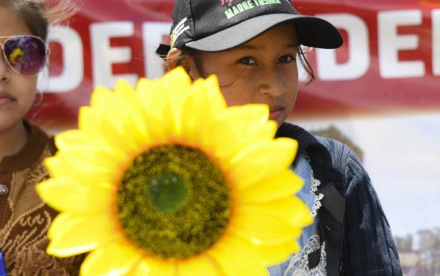Las 41 niñas que fallecieron en un incendio fueron recordadas con girasoles. Foto: AFP.
