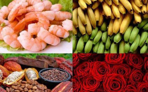 Ecuador exportó en 2019 por valor de unos 22.000 millones de dólares, de los que el 39% correspondieron a exportaciones petroleras y derivados. Entre sus otros principales rubros de exportación: banano, camarón, flores, cacao y pescado procesado.