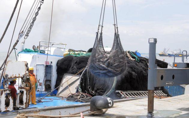 Ecuador se encuentra a la espera de recibir a la Misión de Auditoría de la Unión Europea para que puedan efectuar una nueva evaluación que revelará la cooperación del país en contra de la pesca ilegal.(Foto José Dimitrakis/Editorial Vistazo)
