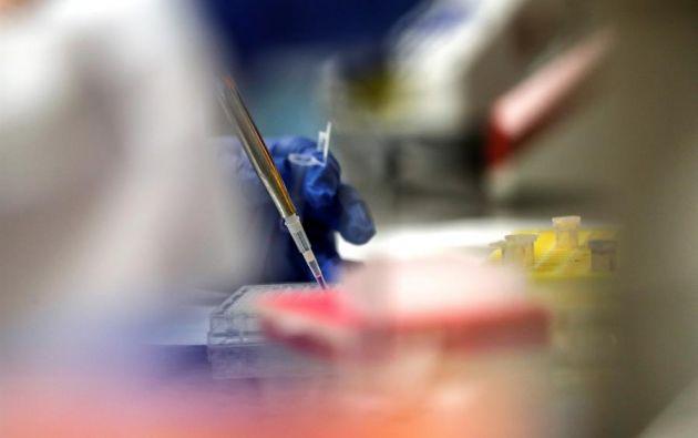 """La firma señaló que su vacuna experimental """"desarrolló anticuerpos neutralizadores"""" en ocho voluntarios. Foto: EFE."""