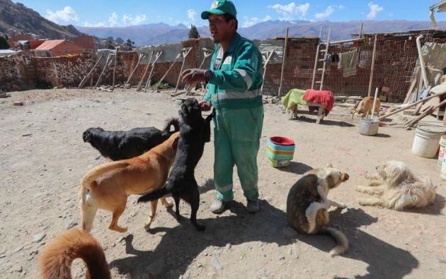 Miguel Ángel Condori junto con los perros que rescató. Foto: EFE.