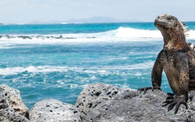 Este paraíso está compuesto de 129 islas e islotes.