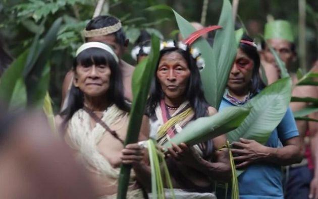 Desde que se detectó el primer contagio en territorios indígenas, el pasado 1 de mayo, se han realizado 3.757 pruebas para COVID-19.