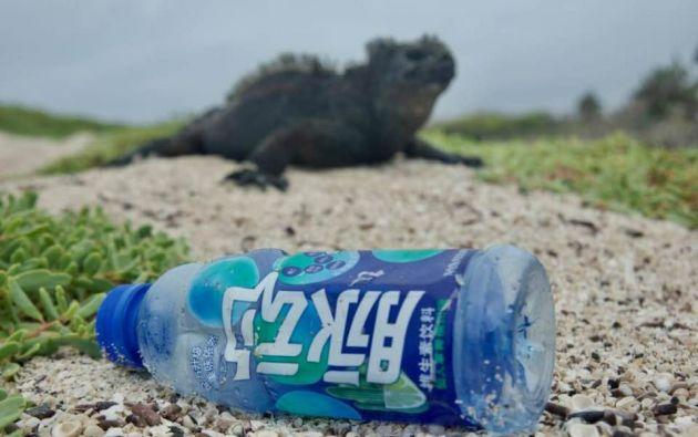 Invitan a la ciudadanía al plantón 'Acción por Galápagos' que se desarrollará este viernes 14 de agosto.