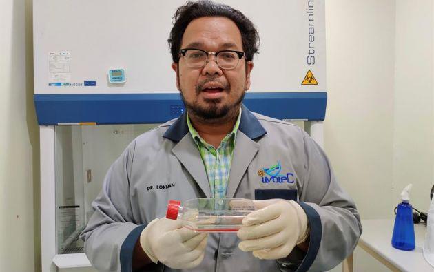 El investigador Muhammad Lokman, de la Universidad Islámica Internacional de Malasia, sostiene una muestra de células somáticas de rinoceronte de Sumatra conservadas para tratar de revivir la especie en Malasia mediante clonación. Foto: EFE.