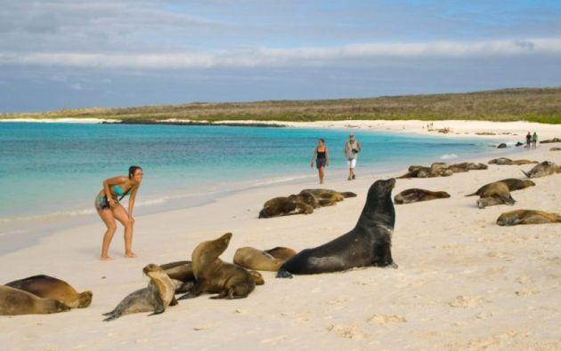 Galápagos depende principalmente de los ingresos por turismo, que oscilan entre un 70 % a 75 % de su economía.
