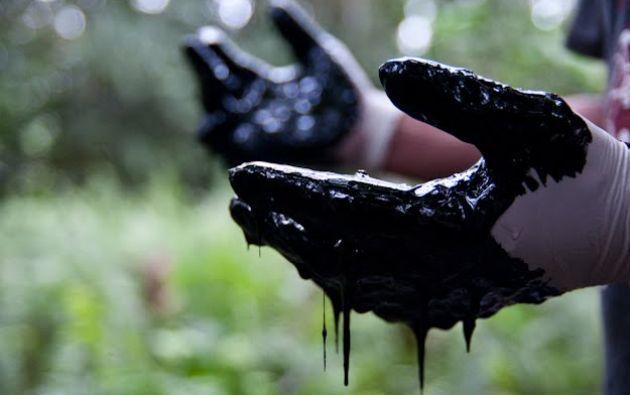 """El tribunal estableció, además, que la sentencia ecuatoriana """"es inejecutable bajo el derecho internacional"""" y desestimó las acusaciones ambientales contra la petrolera."""