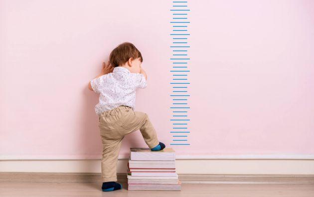 Los niños  podrían dejar de crecer hasta 3 centímetros y aumentar alrededor de  1 kilogramo por mes, debido al encierro por la pandemia. Foto: Pixabay