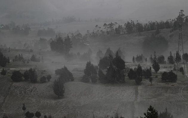 Vista de ayer, de la ceniza del volcán Sangay que cayó sobre cultivos en el sector de Palmira, provincia de Chimborazo. Foto: EFE.