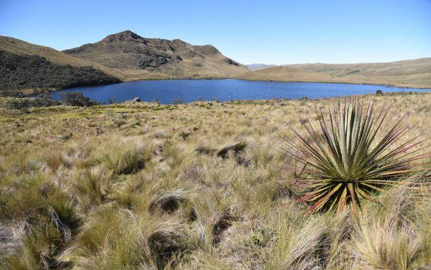 La consulta tiene como objetivo prohibir que se desarrolle la fase de explotación minera en concesiones que se ubican cerca de los ríos Tarqui, Yanuncay, Tomebamba, Machángara y Norcay.