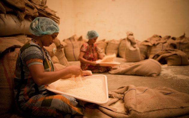 La raíz de esta situación es la desigualdad económica y la FAO insta a implementar políticas con una perspectiva de igualdad de género. Foto: Pixabay
