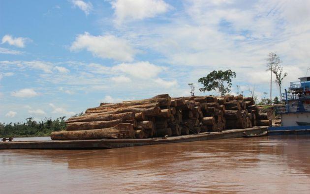 Ecuador tiene una porción diminuta de la Amazonía, apenas un 2-3 por ciento del total, pero su importancia radica en que es la región más biodiversa de la cuenca. Foto: Pixabay