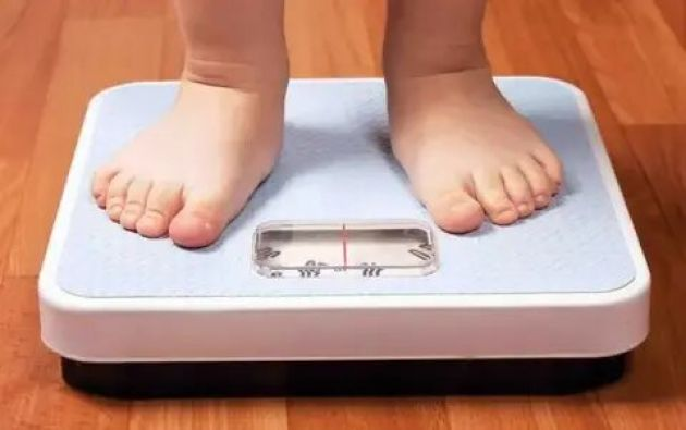 La prevalencia de la obesidad de quienes hablan español es 24,4 %, aproximadamente 50 % más alta de la de quienes sólo hablan inglés.
