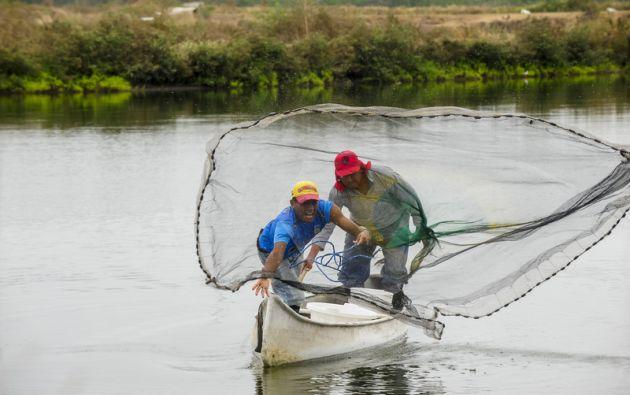 Un manejo adecuado de agua y suelo y la calidad de agua son cruciales para reducir los patógenos. Foto Vistazo.