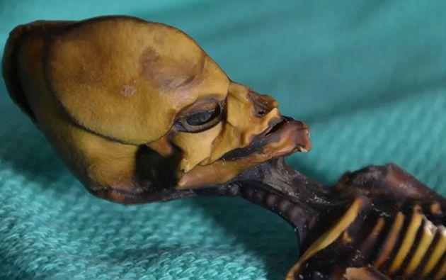Pese a la evidencia científica, hay muchos que creen que Ata es un extraterrestre. Foto: National Geographic.