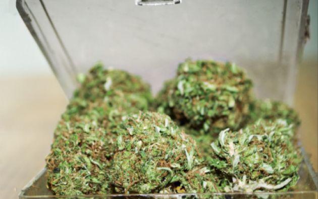 En Estados Unidos el uso de la marihuana es legal solo para uso terapéutico.