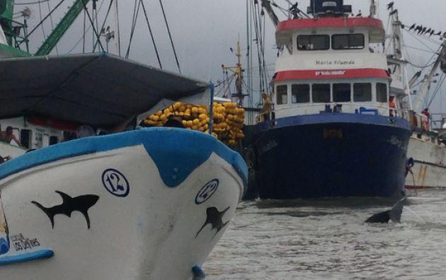 Decenas de embarcaciones al pie del muelle.