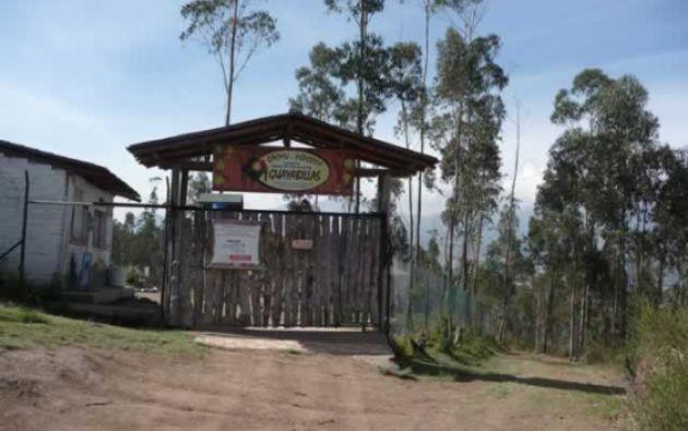 El centro abrió sus puertas en 2003, el objetivo era albergar a especies. Foto: Centro de Rescate Animal Guayabillas