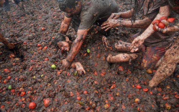 """9na edición del festival """" tomatina """" o lucha de tomates en Sutamarchan, Colombia. GUILLERMO LEGARIA / AFP"""
