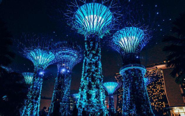 Jardines de la Bahía de Singapur.