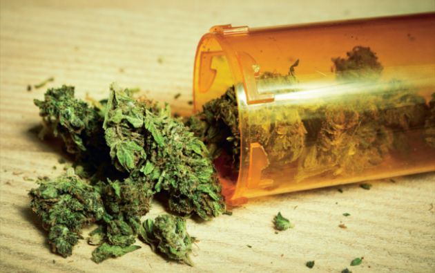 La legalización de la marihuana comienza a tener eco en América Latina.