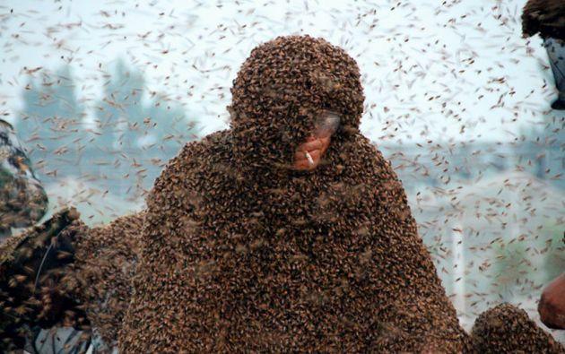 Gao tuvo que soportar un total de 109 kilos de abejas, para romper el récord mundial.