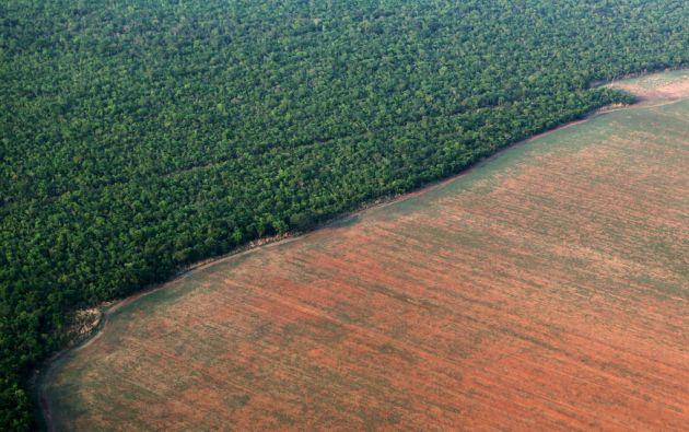 Un área de la selva amazónica de Brasil fue deforestada y preparada para el cultivo de soja. Foto: REUTERS