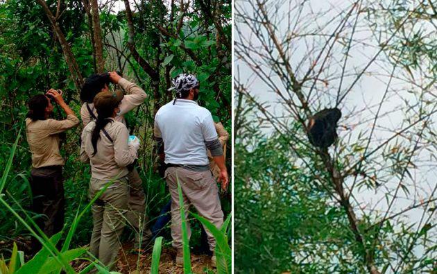 Fotos: Ministerio del Ambiente