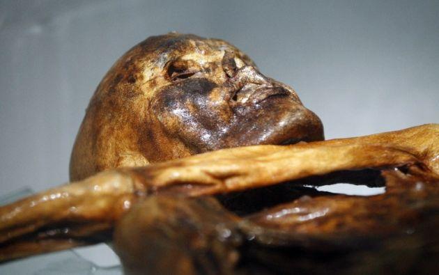 Los científicos analizaron la nanoestructura de la carne de cabra encontrada en el estómago de la momia y la compararon con otros tipos de carne preparada. Foto: AFP.