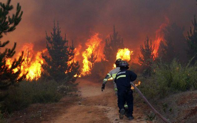 Pese a su dimensión, el incendio avanzó sin dejar lesionados.| Foto: AFP