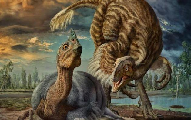 Denominados 'Macroelongatoolithus', sus huevos se parecen mucho a los de los oviraptorosaurios. | Foto: Nature Communications.