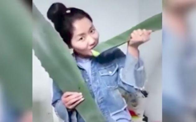 La joven creyó que se trataba de una planta de aloe vera y deseaba mostrar los beneficios de la misma a sus seguidores a través de Facebook.