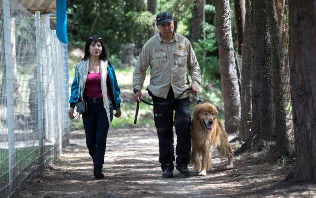 El paseo y la salud son aspectos fundamentales en el cuidado de los animales de compañía. Foto: Cecilia Puebla