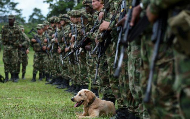 Navas informó que para fines de investigación se detuvo a nueve personas en la zona fronteriza. Foto: AFP
