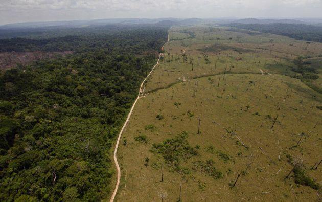 La Amazonía en Ecuador ha perdido hasta un 20 % de su extensión en las últimas décadas.
